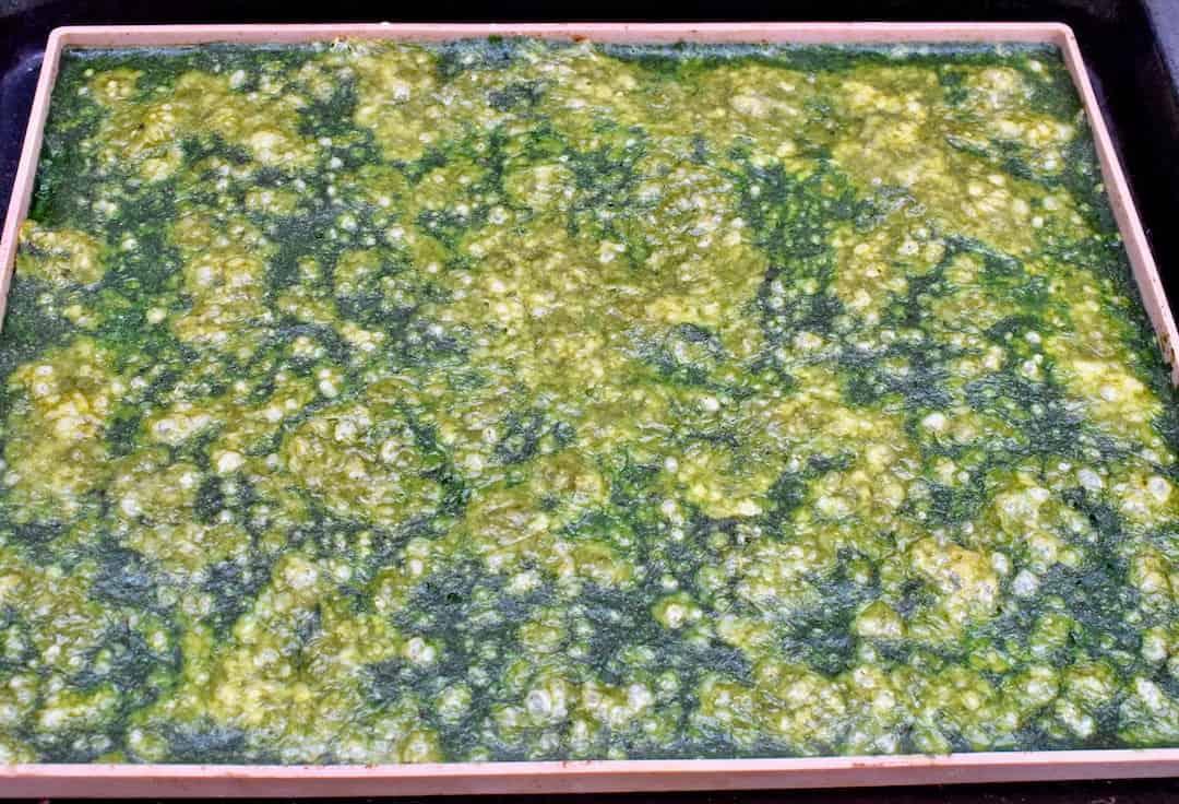 Spinat-Lachs-Rolle mit Käse nach dem Backen – Foto: Nicole Stroschein