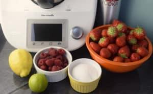 Erdbeerlimes aus dem Thermomix® –Die Zutaten – Foto: Nicole Stroschein