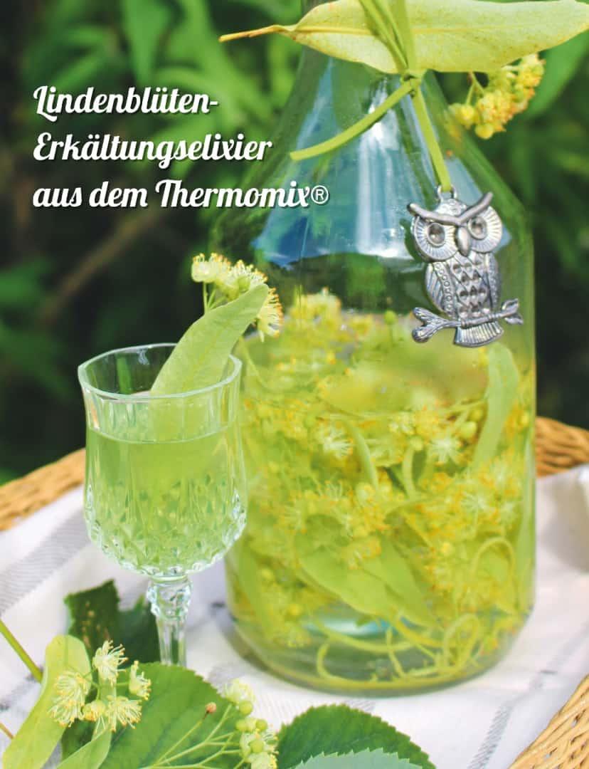 Kräutermedizin aus dem Thermomix® Lindenblüten-Erkältungselixier – Foto: Elisabeth Engler