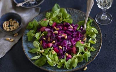 Rotkohlsalat auf einem Feldsalatbett