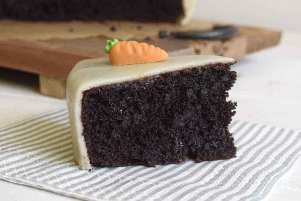 Schokoladiger Karottenkuchen mit dem Thermomix® –Foto: Nicole Stroschein