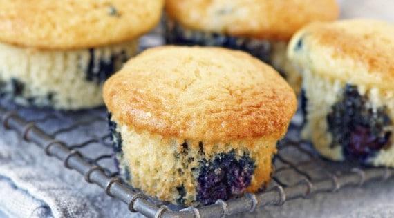 Heidelbeer-Muffins mit dem Thermomix® – Foto: Alexandra Panella