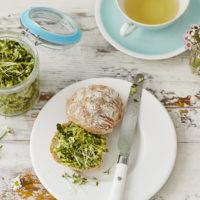 Grüner Kräuteraufstrich mit Brokkoli