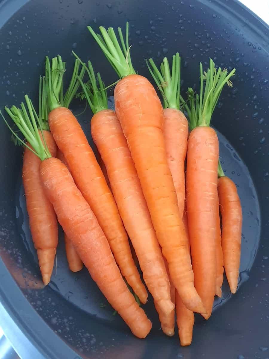 Karotten in den Varoma® geben – Foto: Nicole Stroschein