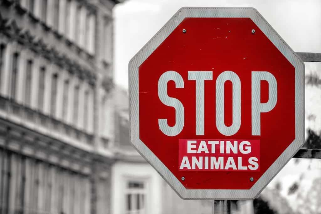 Vegan leben bedeutet auf tierische Produkte zu verzichten – Foto: Simon Berger / Unsplash